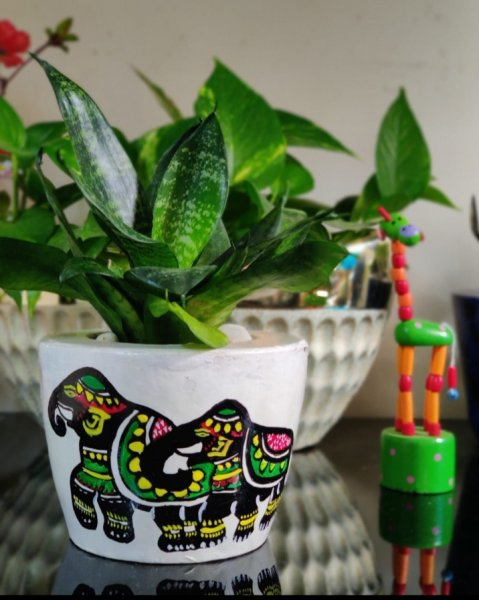 White and colorful elephant handpainted planter