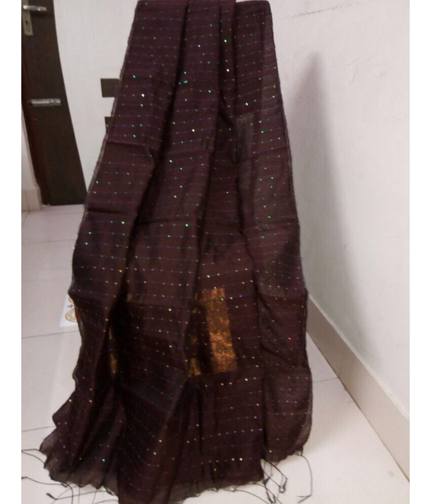 Black Handloom Sequence Saree