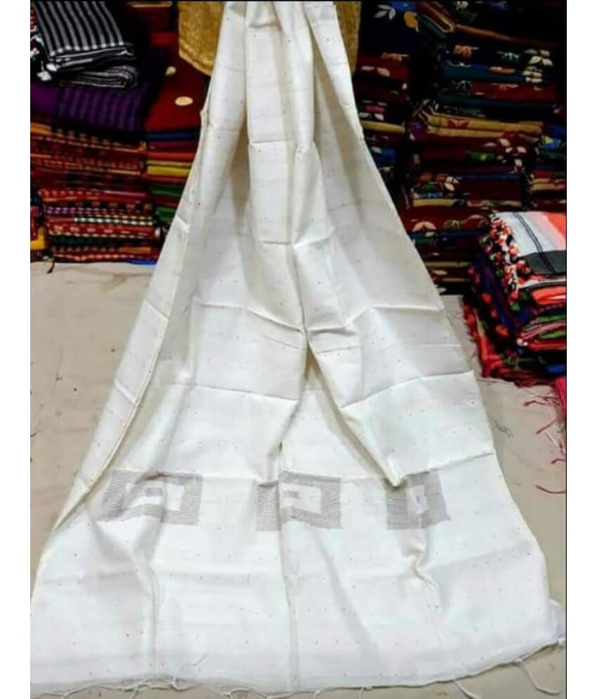 White Handloom Sequence Saree