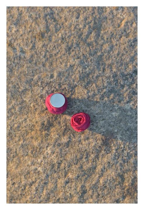 Wilderness Magnet Earrings