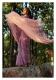 Lavender Lullaby Tissue Chanderi Saree