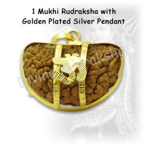 1 Mukhi Rudraksha with Golden Pendant