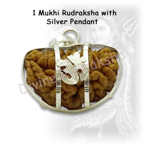1 Mukhi Rudraksha with Silver Pendant