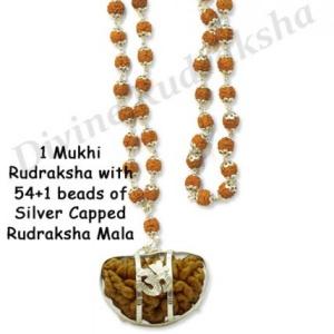 1 Mukhi Rudraksha with Capped Rudraksha Mala