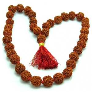 Four (4) Mukhi Rudraksha Mala - Nepalese