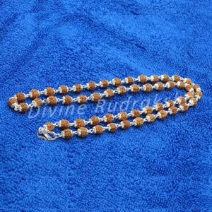 5 Mukhi Silver Capped Rudraksha Mala