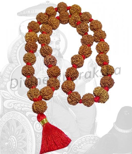 Shani Sade Sati Rudraksha Mala