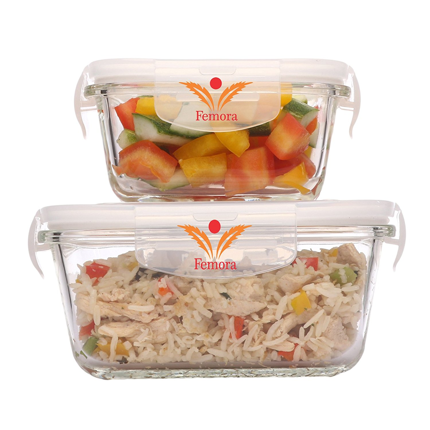 Borosilicate Glass Square Container with Air Vent Lid 300 ML ,500ML, Set of 2
