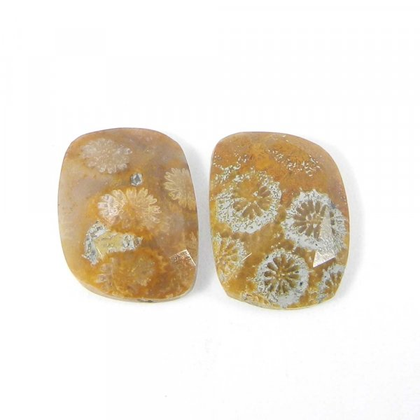 1 Pair Fossil Coral 16x12mm Fancy Rose Cut 13.25 Cts