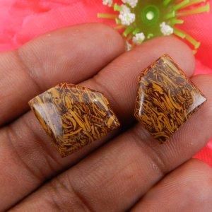 1 Pair Mariam Jasper 15x15mm Fancy Shape 18.10 Cts
