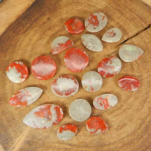 50 Grams Utah Coral Mix Shape Cabochon Wholesale Lot
