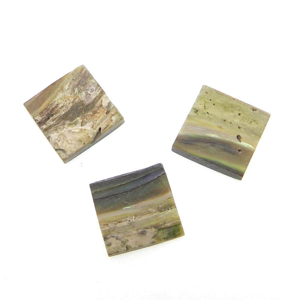 Abalone Shell 12x12mm Square Cabochon 4.75 Cts