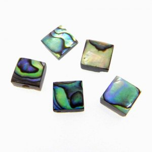Abalone Shell 6x6mm Square Cabochon 0.80 Cts