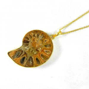Ammonite 52mm 18k Gold Plated Bezel Pendant