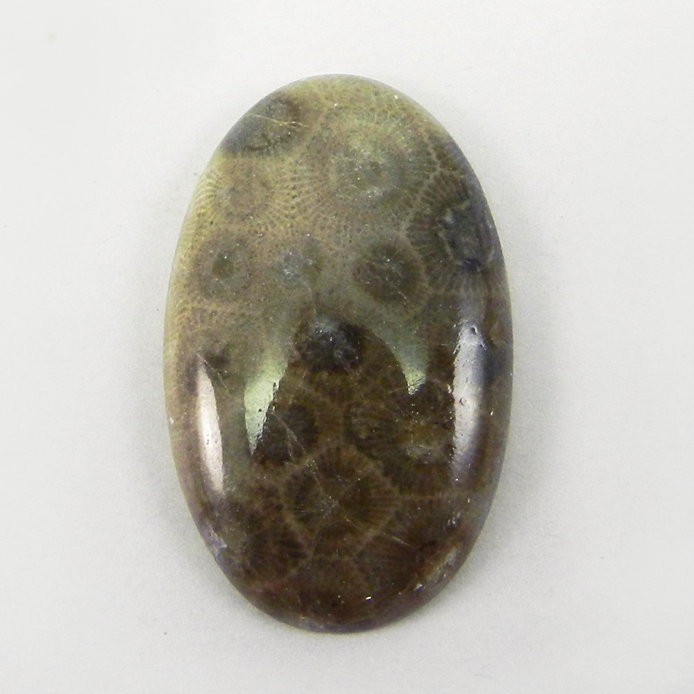 Black Fossil Coral 39x24mm Oval Cabochon 45.1 Cts