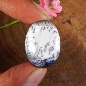 Dendritic Opal 26x18mm Oval Cabochon 21.00 Cts
