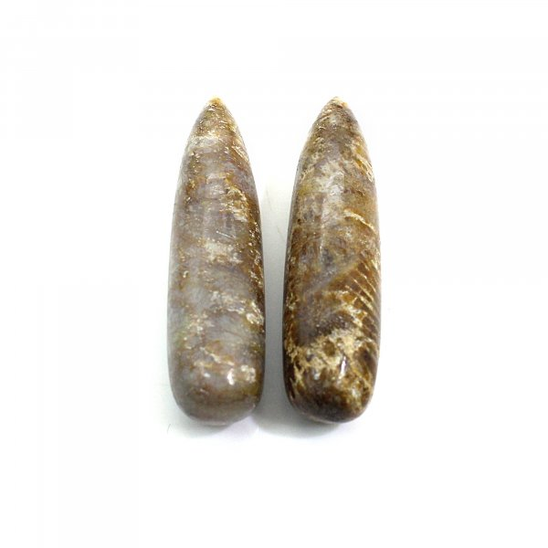 Natural Fossil Coral 30x8mm Drop Smooth 29.05 Cts