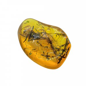 Insect Synthetic Amber 45x34mm Uneven Tumble With Drilled Stone 79.95 Cts