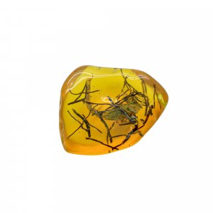 Insect Synthetic Amber 47x40mm Uneven Tumble With Drilled Stone 90.50 Cts