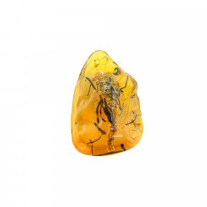 Insect Synthetic Amber 50x30mm Uneven Tumble With Drilled Stone 88.65 Cts