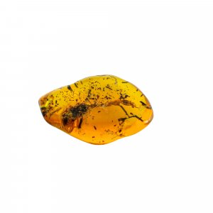 Insect Synthetic Amber 51x33mm Uneven Tumble With Drilled Stone 87.55 Cts
