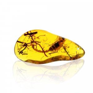 Insect Synthetic Amber 71x34mm Uneven Tumble With Drilled Stone 121.50 Cts