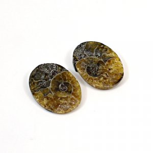 Natural Ammonite Fossil 19x13mm Oval 5.95 Cts 1 Pair Loose Gemstone