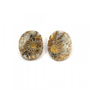 Natural Ammonite Fossil 19x14mm Oval 8.45 Cts 1 Pair Loose Gemstone
