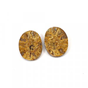 Natural Ammonite Fossil 21x15mm Oval 8.50 Cts 1 Pair Loose Gemstone