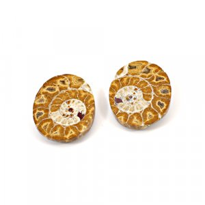 Natural Ammonite Fossil 40x13mm Oval 16.12 Cts 1 Pair Loose Gemstone