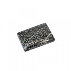 Natural Black Coral Rectangle Cabochon 22.70 Cts 24x17mm Loose Gemstone