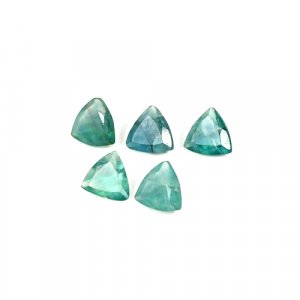 Natural Green Fluorite 9x9mm Trillion Cut 13.25 Cts 5 Pcs Lot Loose Gemstone