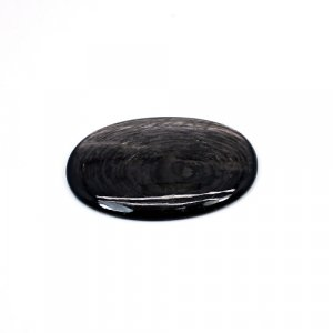 Natural Hypersthene 37x27mm Oval Cabochon 38.95 Cts Loose Gemstone