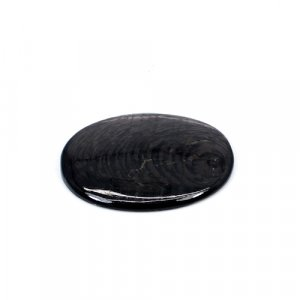 Natural Hypersthene 37x28mm Oval Cabochon 43.95 Cts Loose Gemstone
