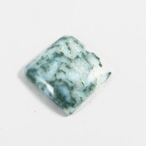 Natural Moss Agate 16x16mm Square Cabochon 9.25 Cts