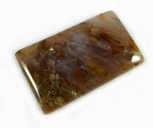 Natural Sagenite Agate 31x19mm Rectangle Cabochon 33.5 Cts