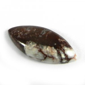 Natural Wild horse Jasper 24x11mm Marquise Cabochon 8.5 Cts