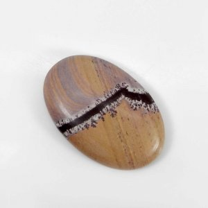 Picasso Jasper 30x19mm Oval Cabochon 24.90 Cts