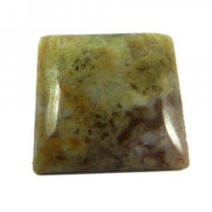 Sagenite Agate 20x20mm Square Cabochon 20.15 Cts