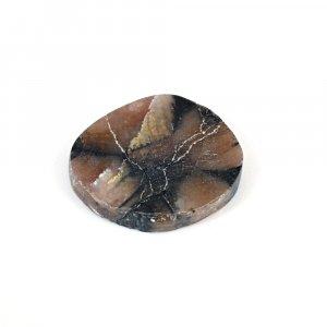 Sanatona Chiastolite 29.55 Cts Freeform Flat 27x23mm Loose Gemstone