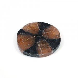 Sanatona Chiastolite 32.65 Cts Freeform Flat 28x25mm Loose Gemstone