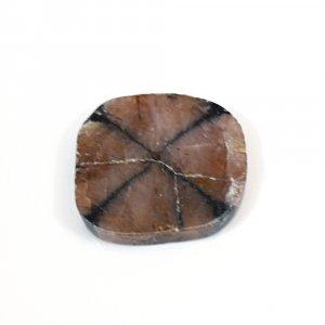 Sanatona Chiastolite 42.20 Cts Freeform Flat 27x26mm Loose Gemstone