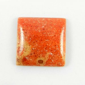 Sponge Coral 17x17mm Square Cabochon 8.3 Cts
