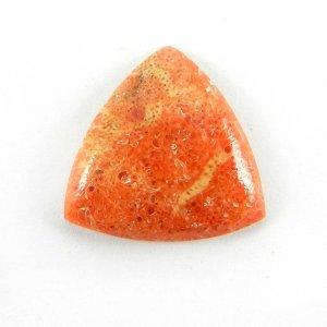 Sponge Coral 17x17mm Trillion Cabochon 6.4 Cts