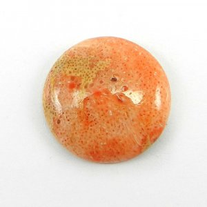 Sponge Coral 18mm Round Cabochon 8.2 Cts