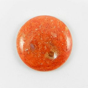 Sponge Coral 21mm Round Cabochon 10.5 Cts