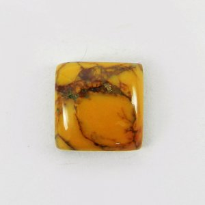Yellow Dendritic Opal 11x11mm Square Cabochon 5.6 Cts