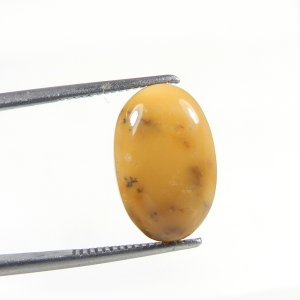 Yellow Dendritic Opal 17x11mm Oval Cabochon 6.00 Cts