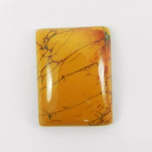 Yellow Dendritic Opal 22x17mm Rectangle Cabochon 15.75 Cts