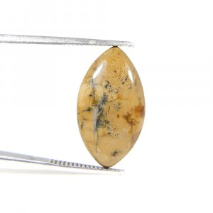 Yellow Dendritic Opal 23x13mm Marquise Cabochon 8.50 Cts